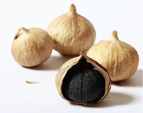 black garlic bawang lanang hitam